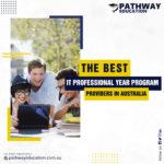 Professional Year Program